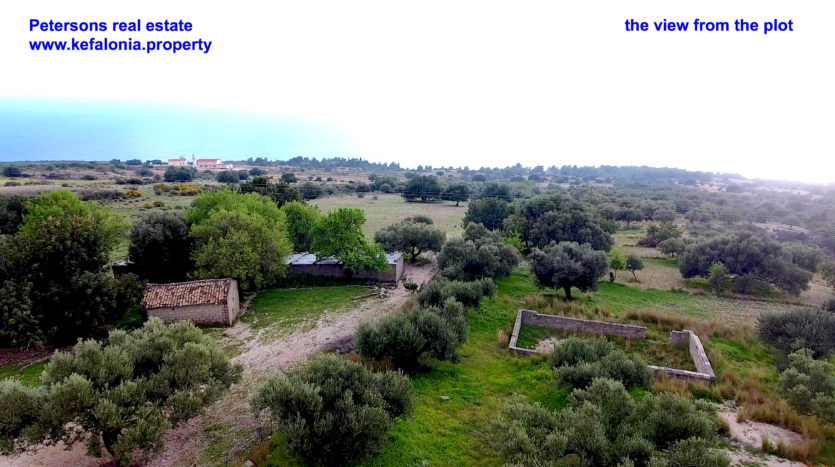 plot for sale sissia