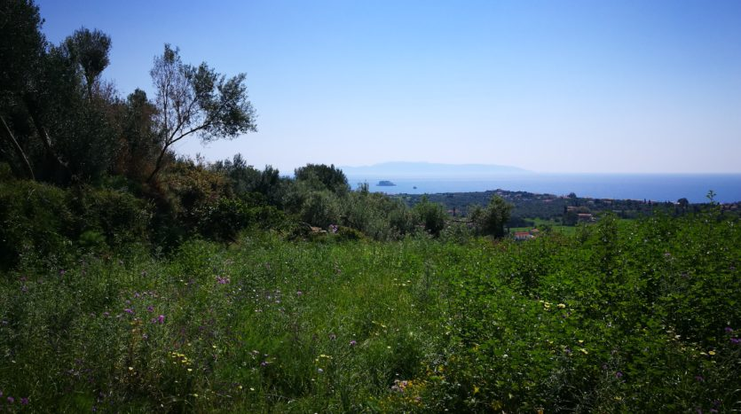 plot for sale in Kefalonia