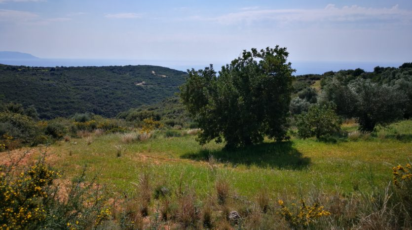 kefalonia property for sale