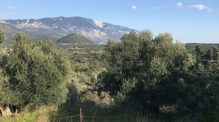 Quiet and exclusive plots in Menegata