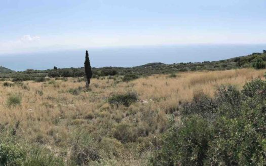 Exclusive plot in Koroni for sale