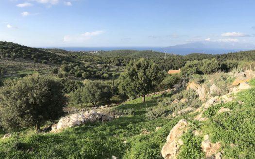 Land for sale in Katsarata