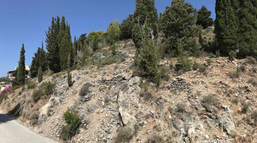 Asos Exclusive Panoramic Plot